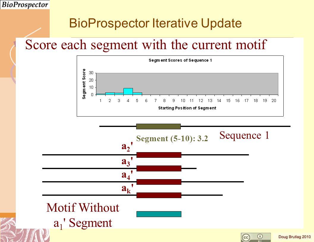 a3 a3 a4 a4 ak ak a2 a2 Motif Without a 1 Segment Segment (5-10): 3.2 Sequence 1 BioProspector Iterative Update Score each segment with the current motif
