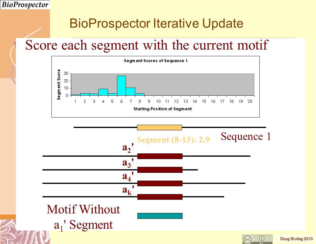 a3 a3 a4 a4 ak ak a2 a2 Motif Without a 1 Segment Segment (8-13): 2.9 Sequence 1 BioProspector Iterative Update Score each segment with the current motif