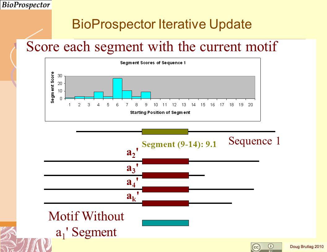 a3 a3 a4 a4 ak ak a2 a2 Motif Without a 1 Segment Segment (9-14): 9.1 Sequence 1 BioProspector Iterative Update Score each segment with the current motif