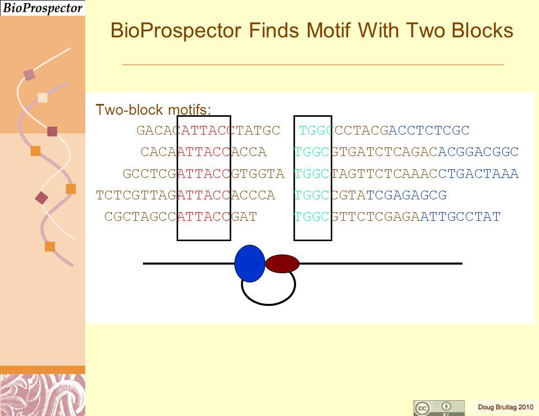 BioProspector Finds Motif With Two Blocks Two-block motifs: GACACATTACCTATGC TGGCCCTACGACCTCTCGC CACAATTACCACCA TGGCGTGATCTCAGACACGGACGGC GCCTCGATTACCGTGGTA TGGCTAGTTCTCAAACCTGACTAAA TCTCGTTAGATTACCACCCA TGGCCGTATCGAGAGCG CGCTAGCCATTACCGAT TGGCGTTCTCGAGAATTGCCTAT