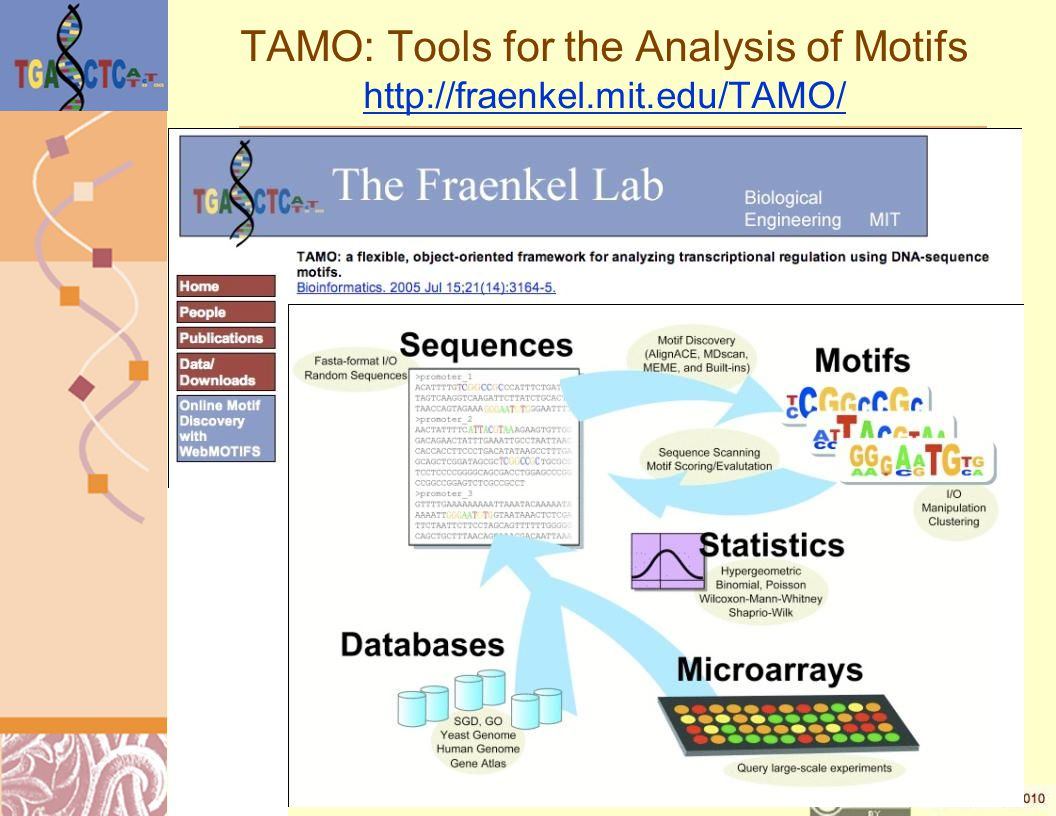 TAMO: Tools for the Analysis of Motifs http://fraenkel.mit.edu/TAMO/ http://fraenkel.mit.edu/TAMO/