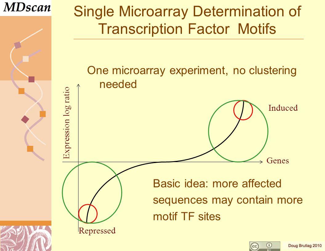 Single Microarray Determination of Transcription Factor Motifs One microarray experiment, no clustering needed Basic idea: more affected sequences may contain more motif TF sites Expression log ratio Genes Induced Repressed