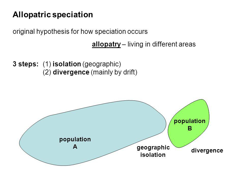 Allopatric speciation original hypothesis for how speciation occurs 3 steps: (1) isolation (geographic) (2) divergence (mainly by drift) allopatry – l