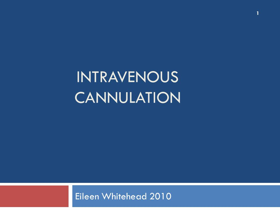 INTRAVENOUS CANNULATION Eileen Whitehead 2010 1