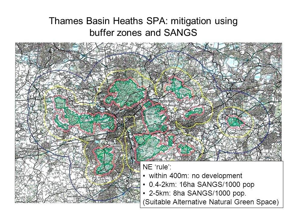 Thames Basin Heaths SPA: mitigation using buffer zones and SANGS NE rule: within 400m: no development 0.4-2km: 16ha SANGS/1000 pop 2-5km: 8ha SANGS/1000 pop.