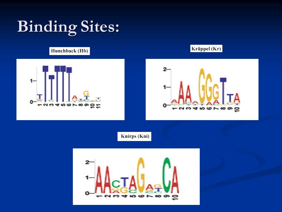 Binding Sites: