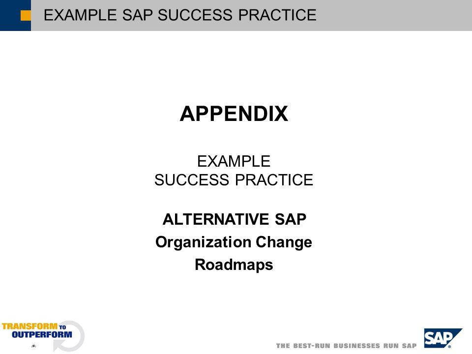 6 EXAMPLE SAP SUCCESS PRACTICE APPENDIX EXAMPLE SUCCESS PRACTICE ALTERNATIVE SAP Organization Change Roadmaps