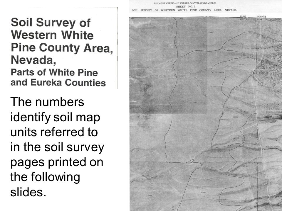 The numbers identify soil map units referred to in the soil survey pages printed on the following slides.