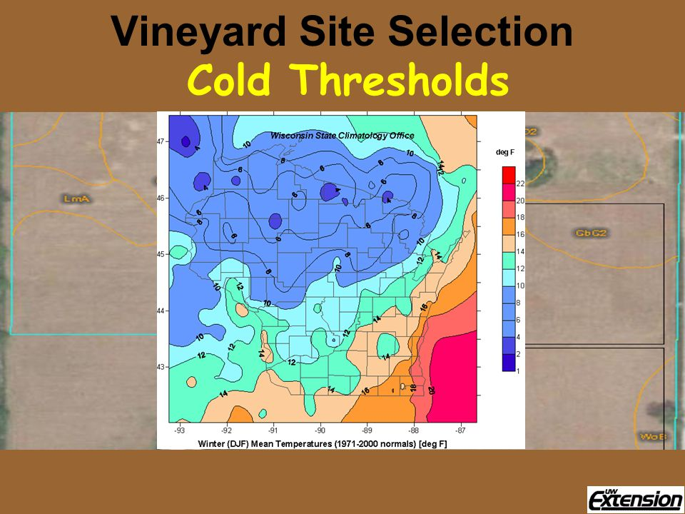 Vineyard Site Selection Cold Thresholds