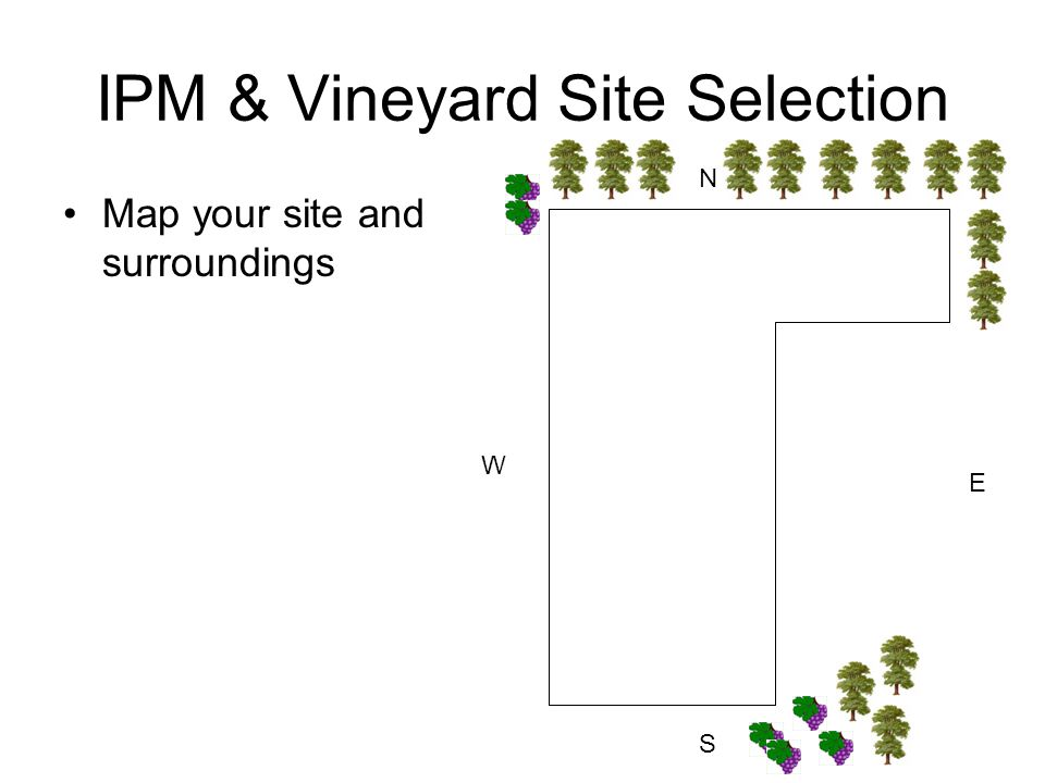 IPM & Vineyard Site Selection Map your site and surroundings N S E W