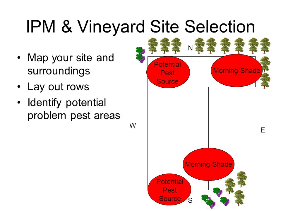 IPM & Vineyard Site Selection Map your site and surroundings Lay out rows Identify potential problem pest areas N S E W Potential Pest Source Morning Shade Potential Pest Source