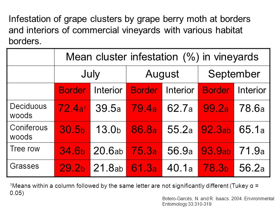 Mean cluster infestation (%) in vineyards JulyAugustSeptember BorderInteriorBorderInteriorBorderInterior Deciduous woods 72.4 a 1 39.5 a 79.4 a 62.7 a