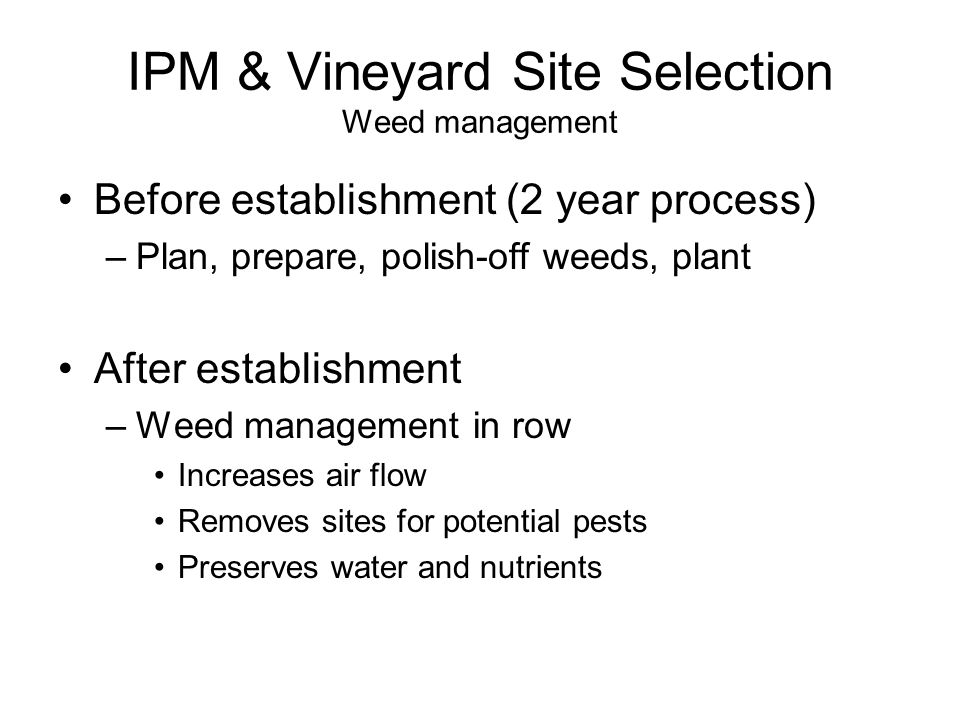 IPM & Vineyard Site Selection Weed management Before establishment (2 year process) –Plan, prepare, polish-off weeds, plant After establishment –Weed