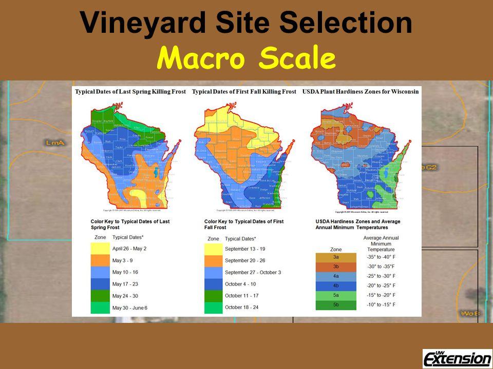 Vineyard Site Selection Macro Scale