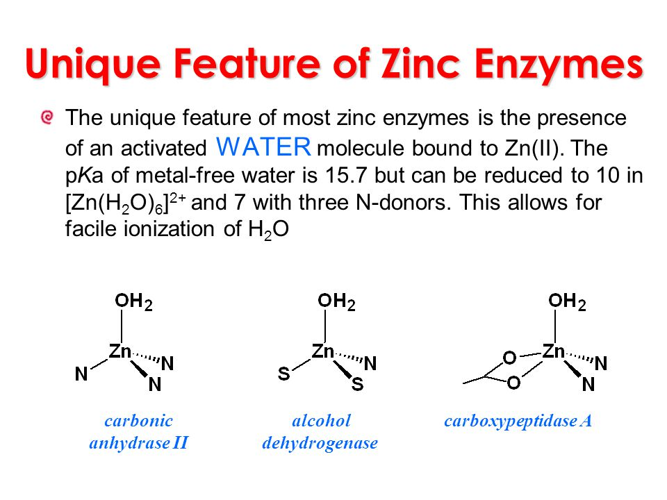 Unique Feature of Zinc Enzymes The unique feature of most zinc enzymes is the presence of an activated WATER molecule bound to Zn(II). The pKa of meta