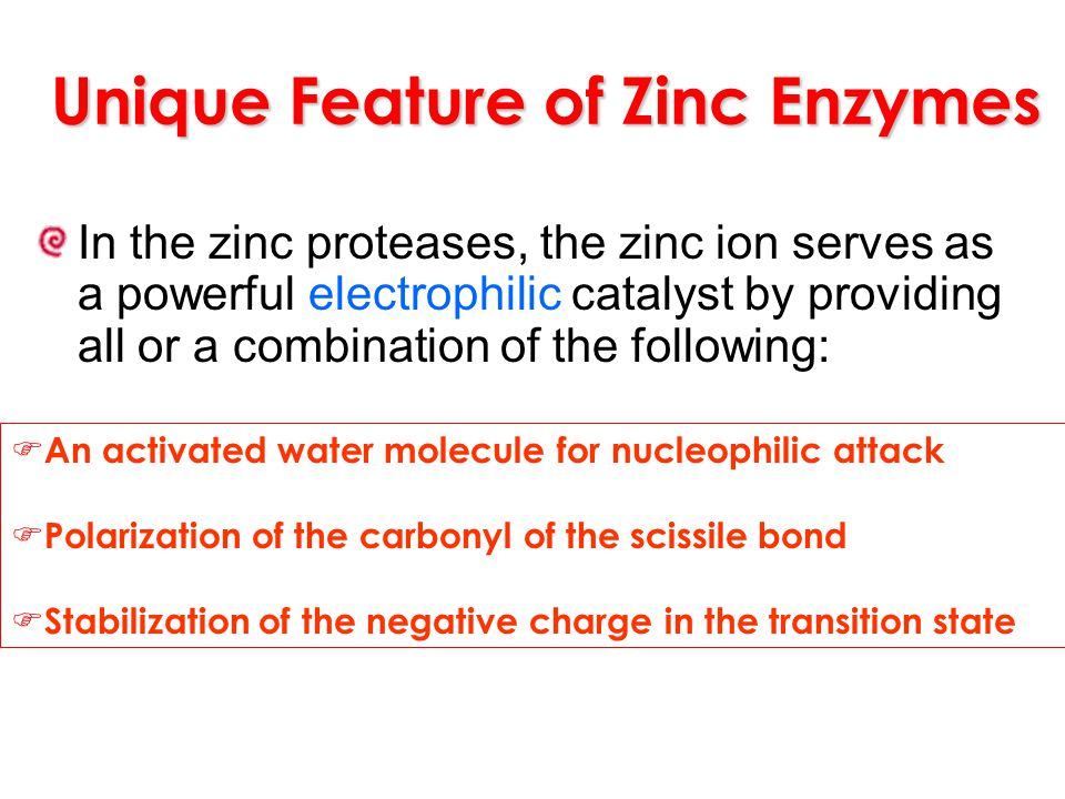 Unique Feature of Zinc Enzymes In the zinc proteases, the zinc ion serves as a powerful electrophilic catalyst by providing all or a combination of th