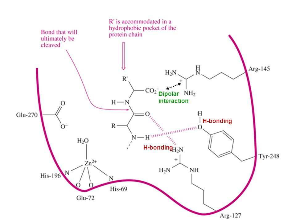 H-bonding Dipolar interaction
