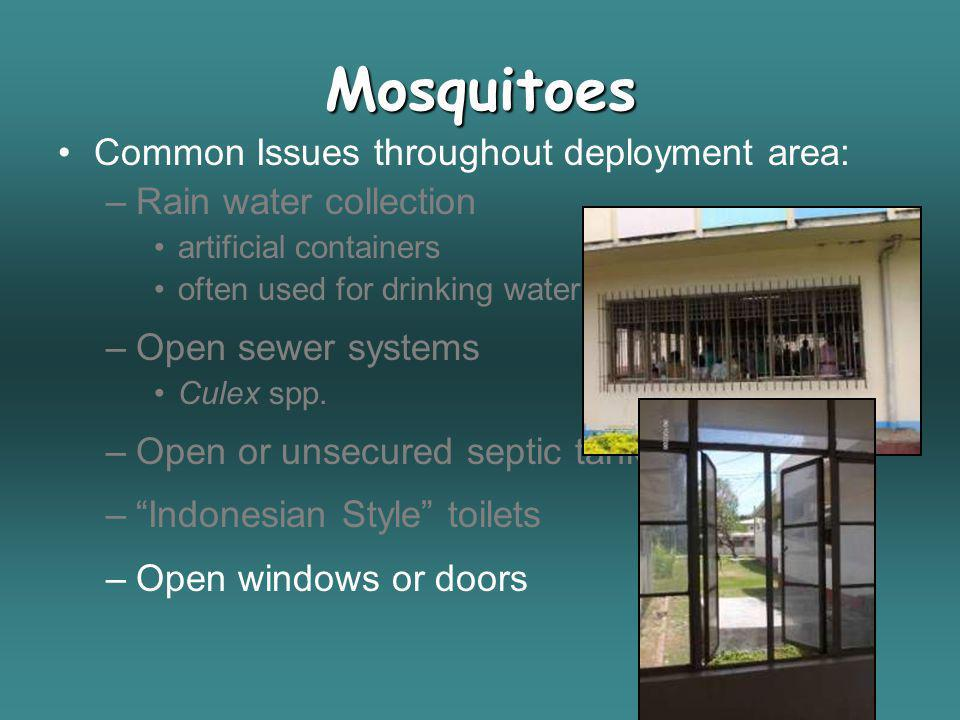 Mosquitoes Common Issues throughout deployment area: –Rain water collection artificial containers often used for drinking water –Open sewer systems Cu