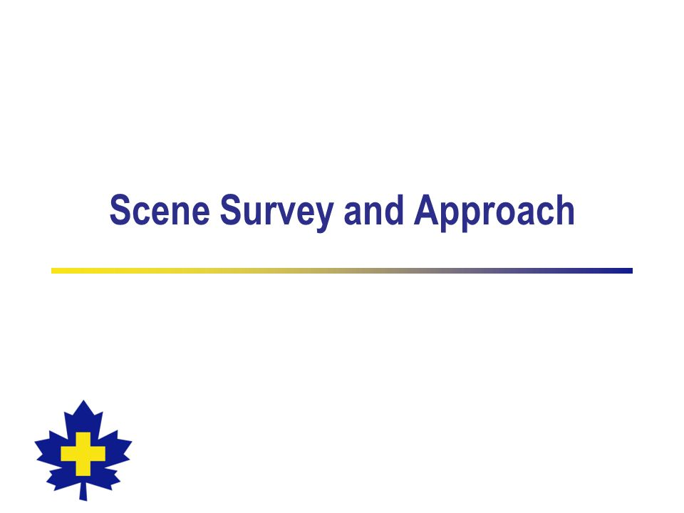 Scene Survey and Approach