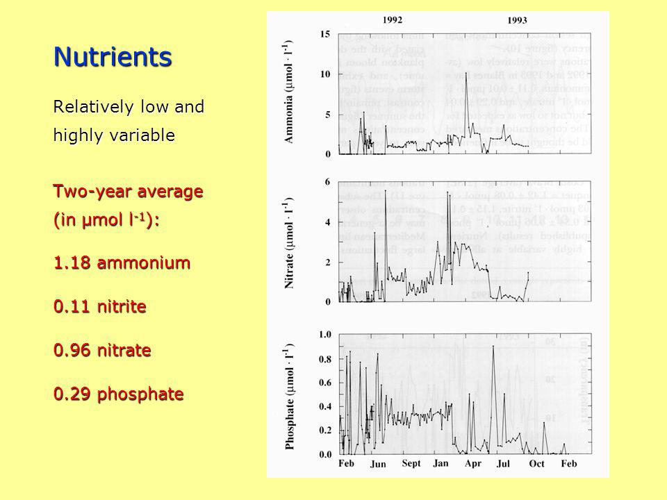 Nutrients Relatively low and highly variable Two-year average (in µmol l -1 ): 1.18 ammonium 0.11 nitrite 0.96 nitrate 0.29 phosphate