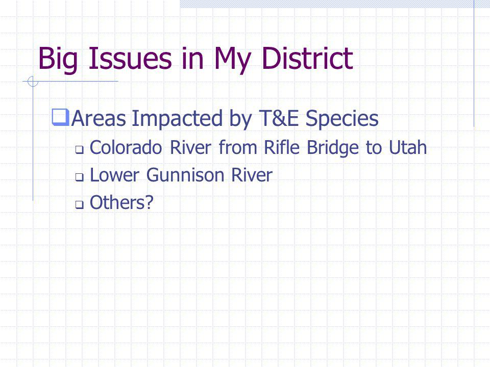 Big Issues in My District Areas Impacted by T&E Species Colorado River from Rifle Bridge to Utah Lower Gunnison River Others