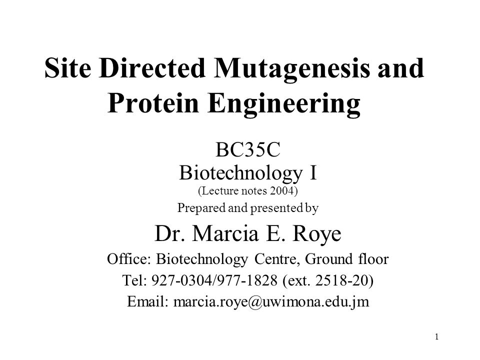 1 Site Directed Mutagenesis and Protein Engineering BC35C Biotechnology I (Lecture notes 2004) Prepared and presented by Dr.