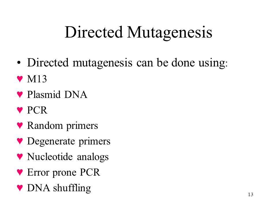 13 Directed Mutagenesis Directed mutagenesis can be done using : M13 Plasmid DNA PCR Random primers Degenerate primers Nucleotide analogs Error prone PCR DNA shuffling