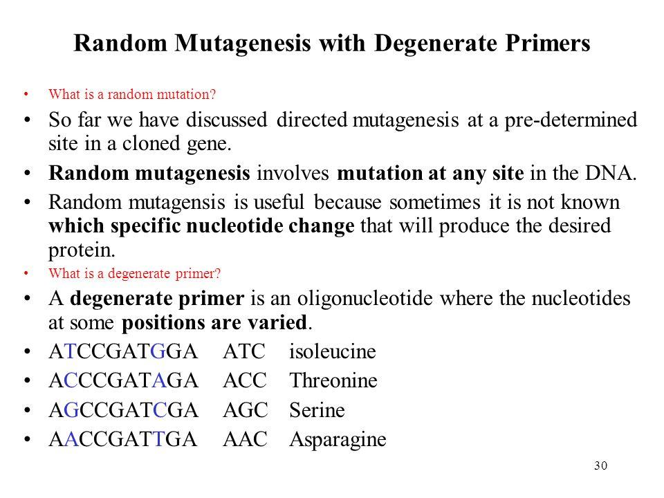 30 Random Mutagenesis with Degenerate Primers What is a random mutation.