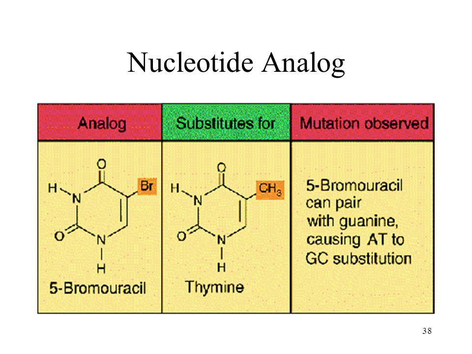 38 Nucleotide Analog