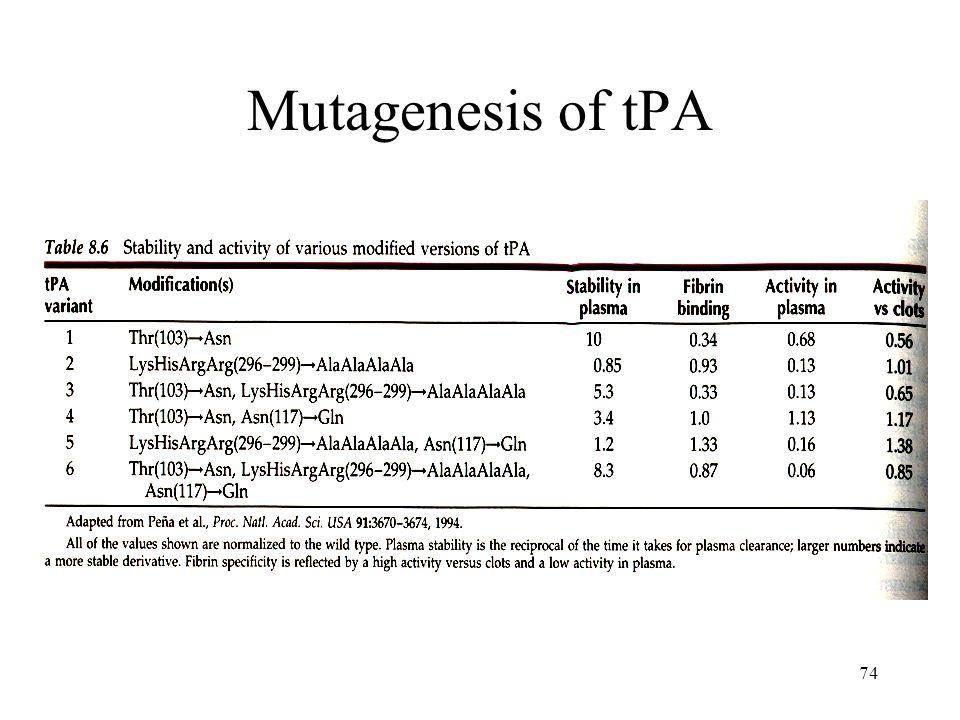 74 Mutagenesis of tPA