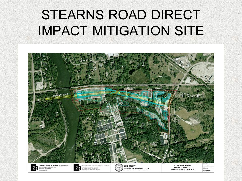 STEARNS ROAD DIRECT IMPACT MITIGATION SITE