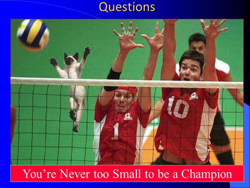 Questions Youre Never too Small to be a Champion
