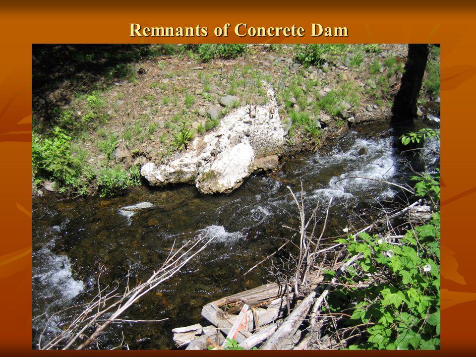 Remnants of Concrete Dam