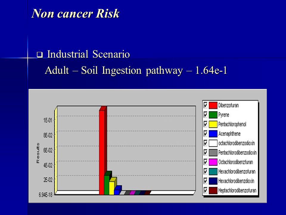 Non cancer Risk Industrial Scenario Industrial Scenario Adult – Soil Ingestion pathway – 1.64e-1 Adult – Soil Ingestion pathway – 1.64e-1