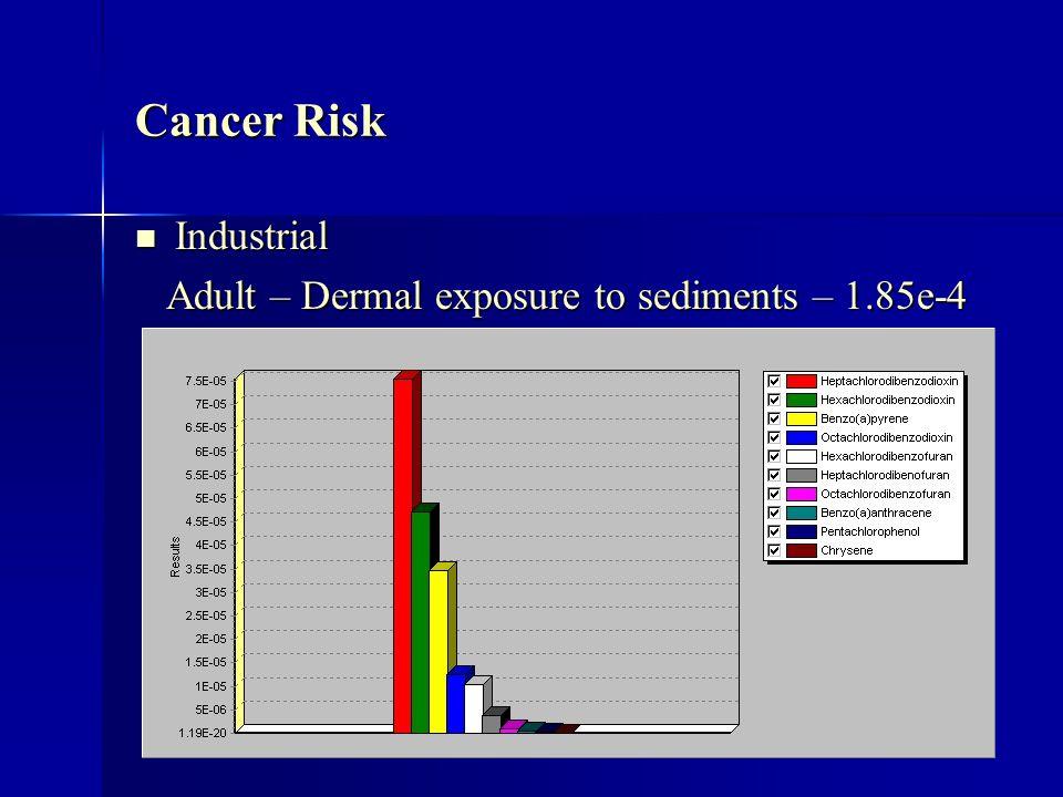 Cancer Risk Industrial Industrial Adult – Dermal exposure to sediments – 1.85e-4 Adult – Dermal exposure to sediments – 1.85e-4