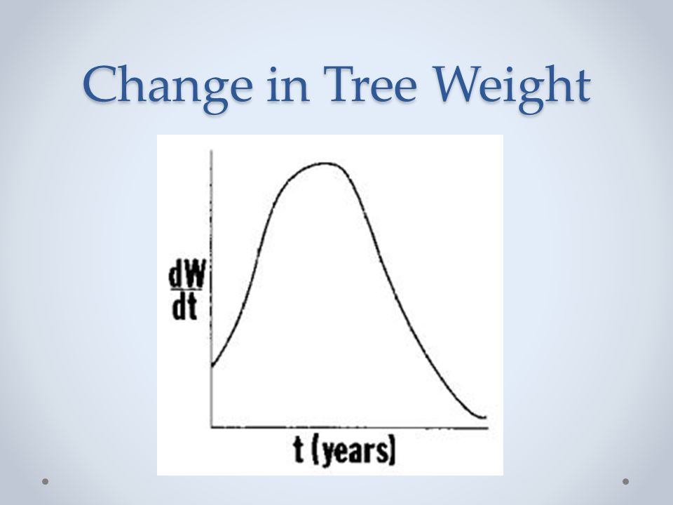 Change in Tree Weight