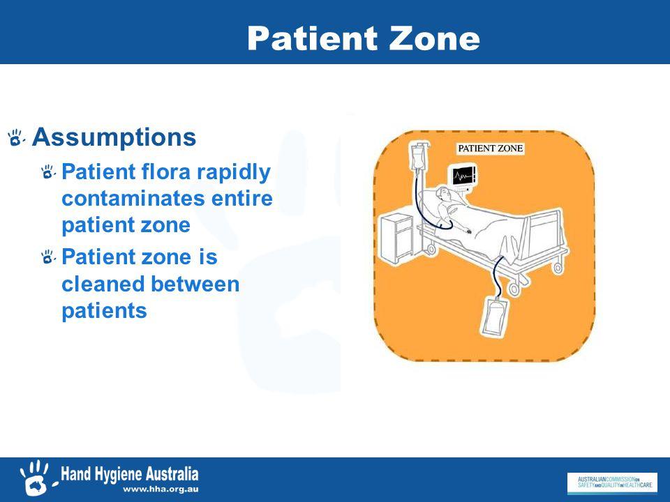 Assumptions Patient flora rapidly contaminates entire patient zone Patient zone is cleaned between patients