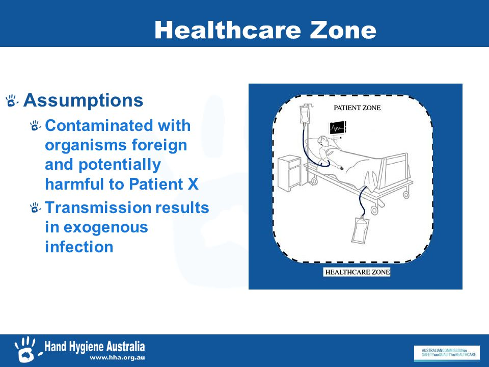 Healthcare Zone Assumptions Contaminated with organisms foreign and potentially harmful to Patient X Transmission results in exogenous infection