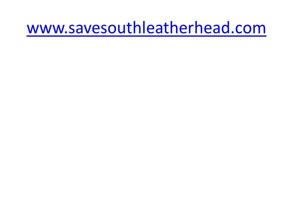 www.savesouthleatherhead.com