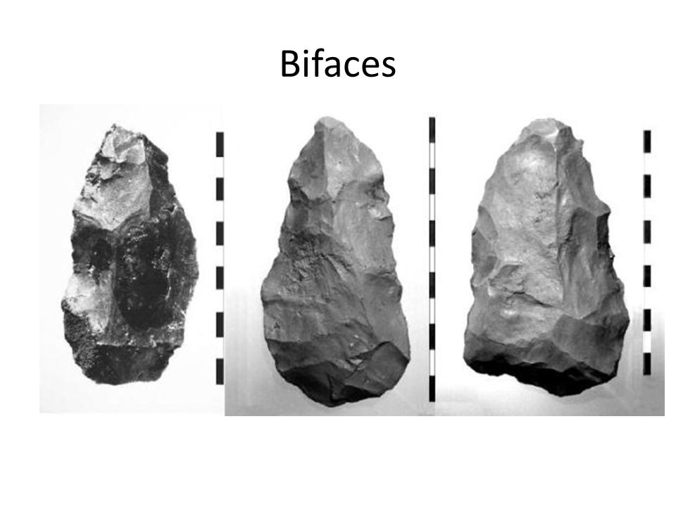 Bifaces