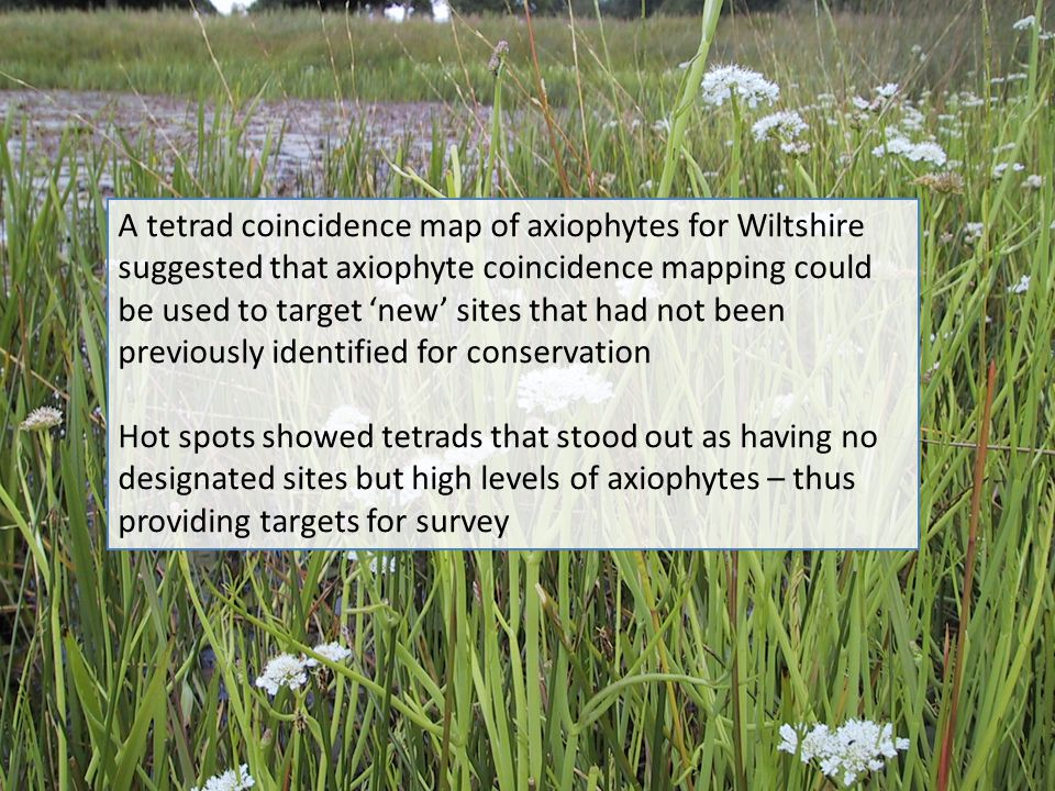 A tetrad coincidence map of axiophytes for Wiltshire suggested that axiophyte coincidence mapping could be used to target new sites that had not been previously identified for conservation Hot spots showed tetrads that stood out as having no designated sites but high levels of axiophytes – thus providing targets for survey