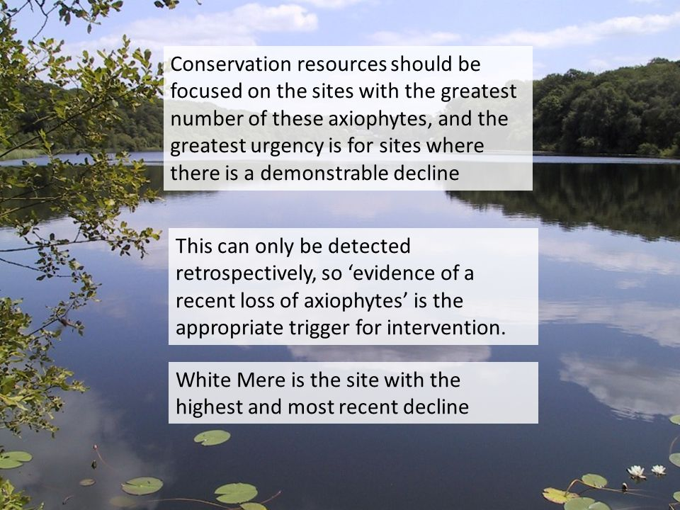 Conservation resources should be focused on the sites with the greatest number of these axiophytes, and the greatest urgency is for sites where there is a demonstrable decline This can only be detected retrospectively, so evidence of a recent loss of axiophytes is the appropriate trigger for intervention.
