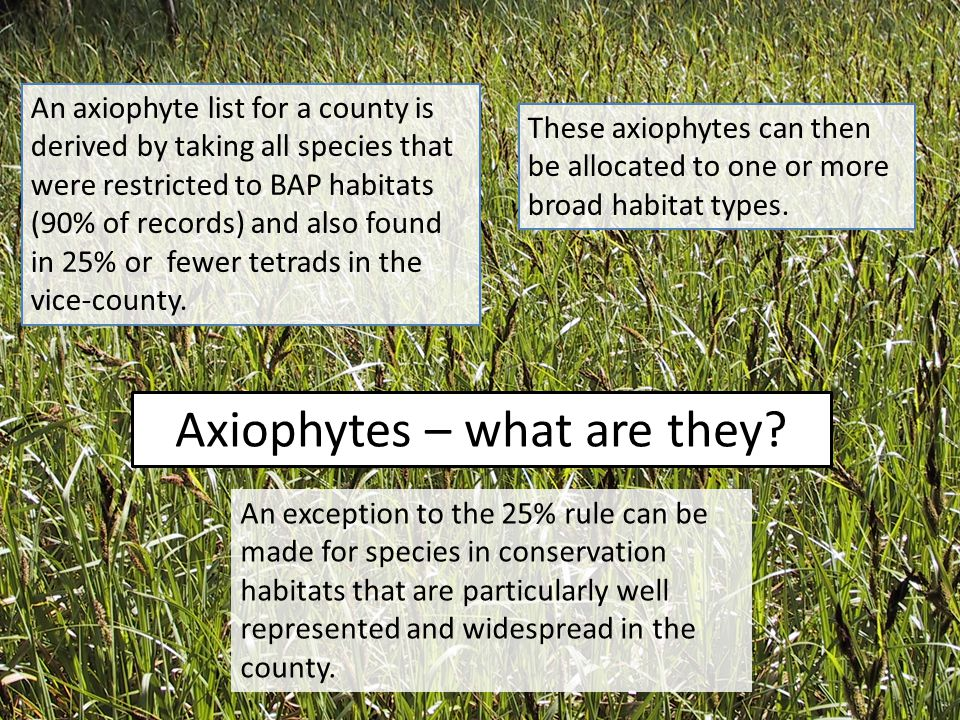 Axiophytes – what are they? An exception to the 25% rule can be made for species in conservation habitats that are particularly well represented and w