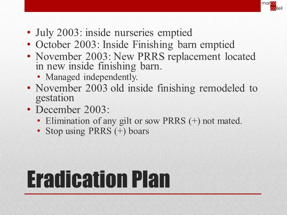 Eradication Plan July 2003: inside nurseries emptied October 2003: Inside Finishing barn emptied November 2003: New PRRS replacement located in new inside finishing barn.