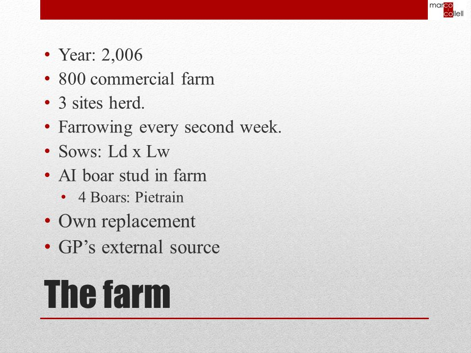 The farm Year: 2,006 800 commercial farm 3 sites herd.