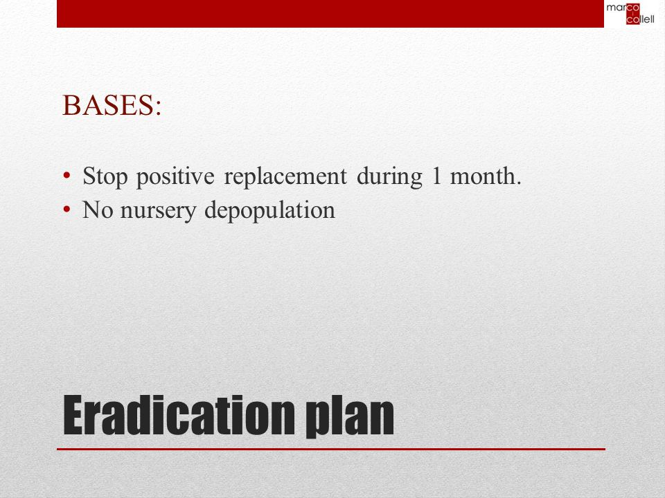 BASES: Stop positive replacement during 1 month. No nursery depopulation Eradication plan