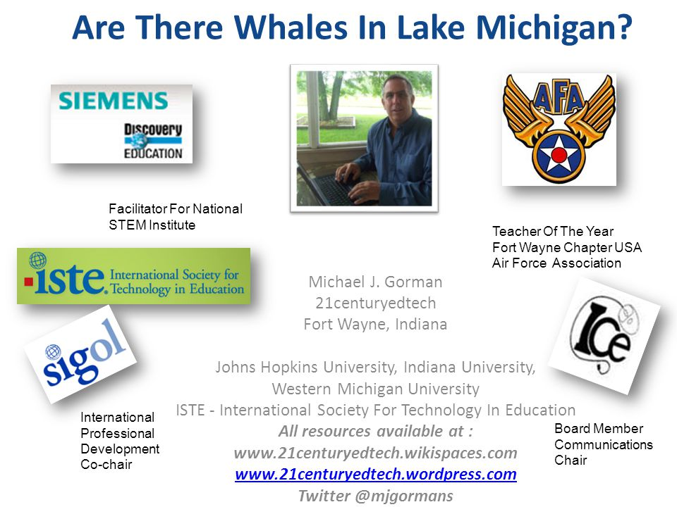 Are There Whales In Lake Michigan. Michael J.