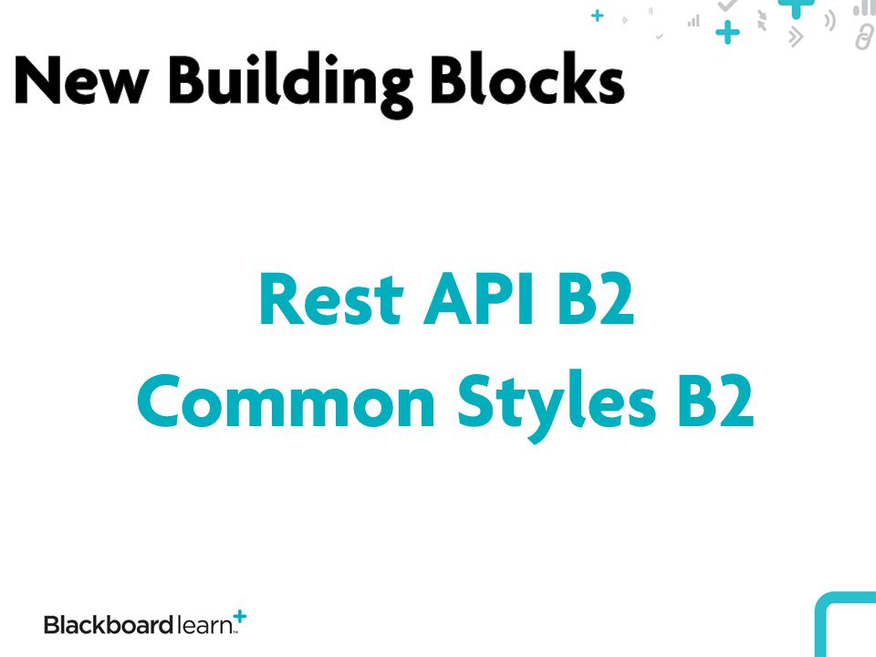 Rest API B2 Common Styles B2
