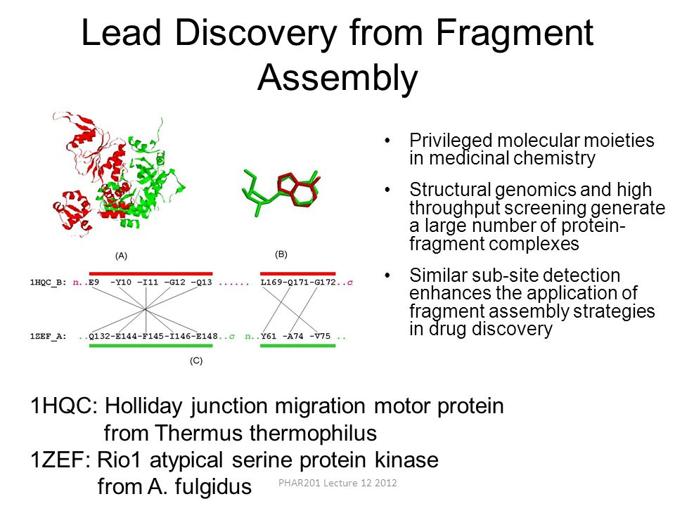 Lead Discovery from Fragment Assembly Privileged molecular moieties in medicinal chemistry Structural genomics and high throughput screening generate a large number of protein- fragment complexes Similar sub-site detection enhances the application of fragment assembly strategies in drug discovery 1HQC: Holliday junction migration motor protein from Thermus thermophilus 1ZEF: Rio1 atypical serine protein kinase from A.