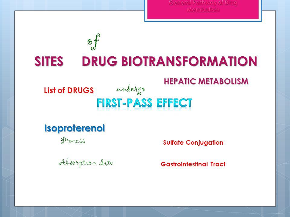SITES DRUG BIOTRANSFORMATION of ENTEROHEPATIC CIRCULATION reabsorption Glucuronide conjugates HYDROLYZE = ß-glucuronidase FREE DRUG RECYCLING also known as